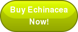 Buy Echinacea Now!