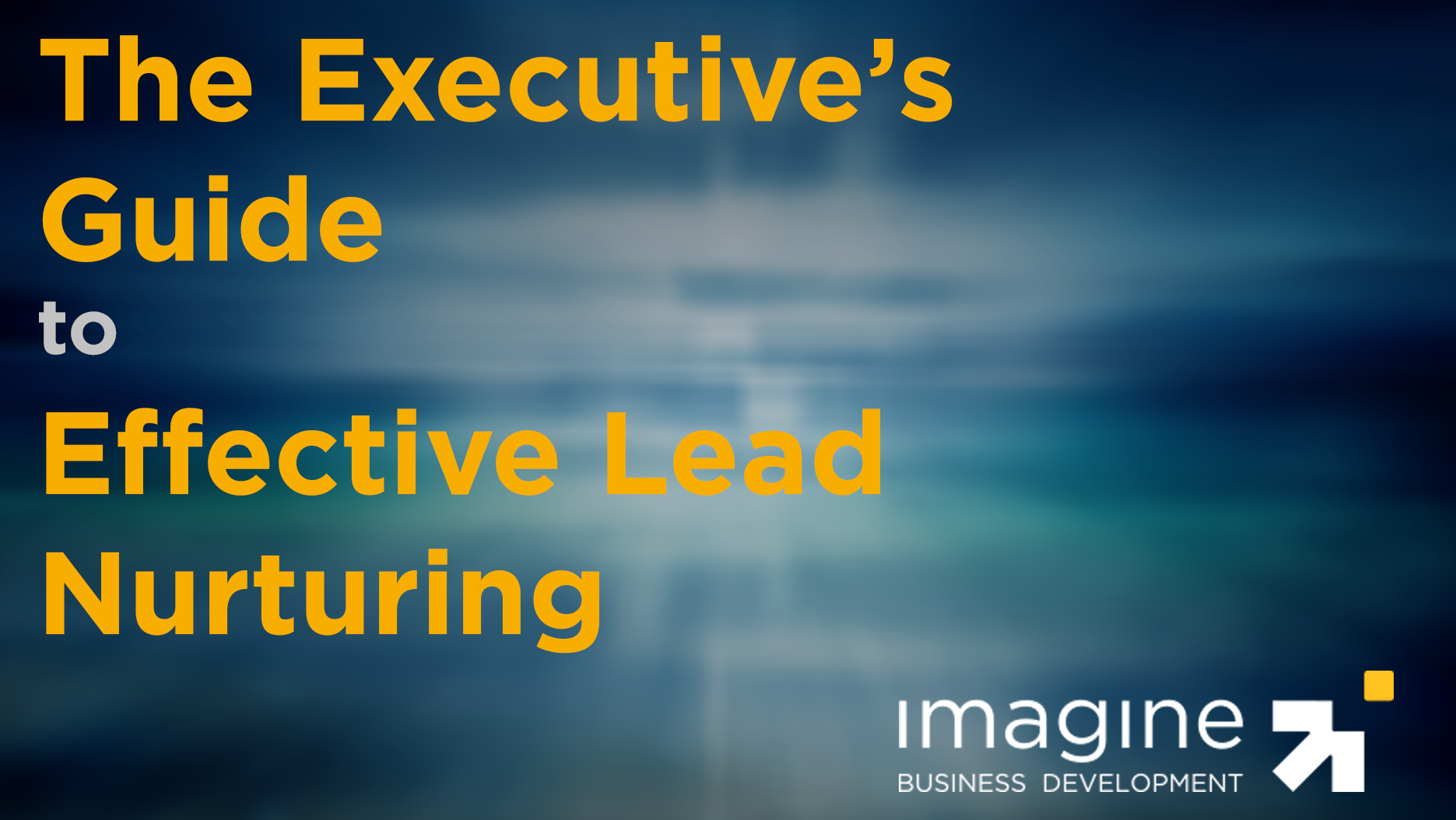 Executive's Guide to Effective Lead Nurturing