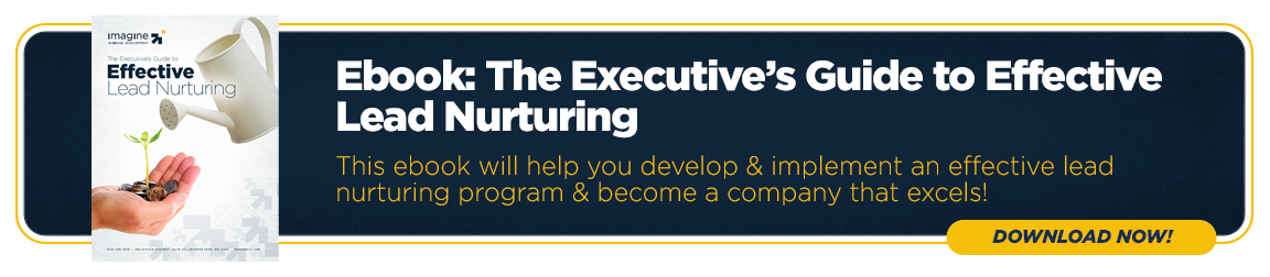 The Executive's Guide to Effective Lead Nurturing
