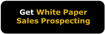 Download Whitepaper     B2B Sales Lead