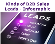 B2B Sales Leads Infographic