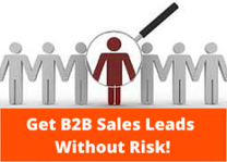 B2B Sales Leads No Risk