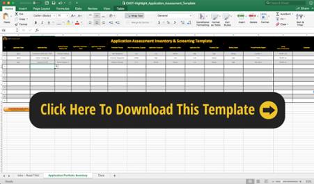 Application Portfolio Assessment Template