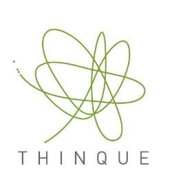 Thinque Wistia Videos
