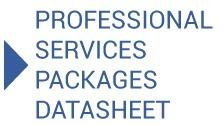 Professional Services Datasheet