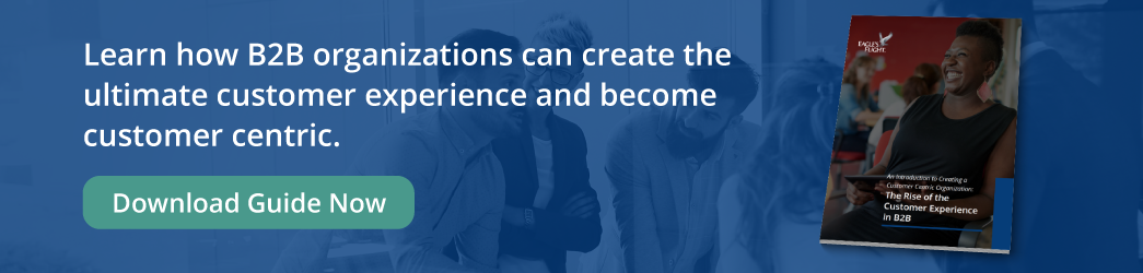 """Download """"The Rise of the Customer Experience in B2B"""""""