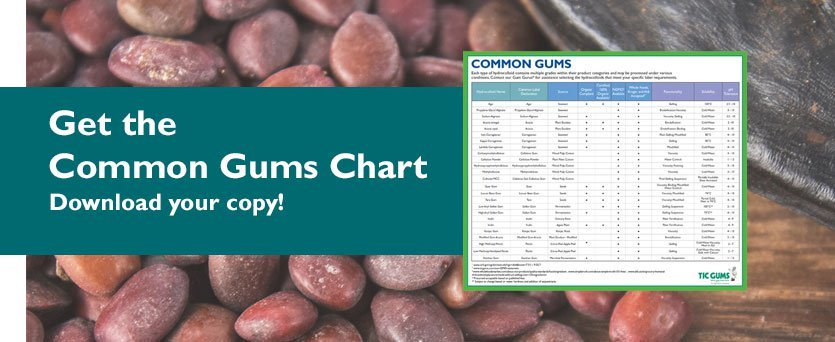 download the gum chart reference
