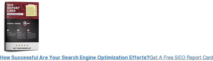 How Successful Are Your Search Engine Optimization Efforts?Get A Free SEO  Report Card