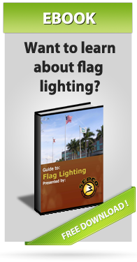 Flag Light eBook CTA