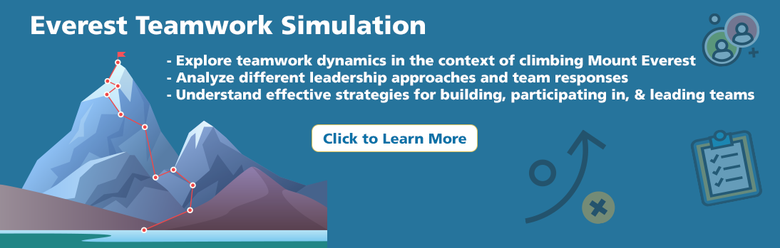 Everest Business Simulation