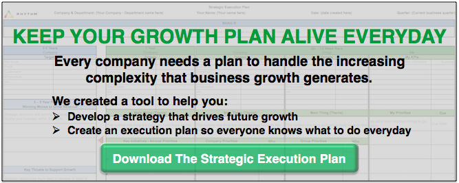 Download the Rhythm Strategic Execution Plan Tool to know what to do every year, quarter and day!
