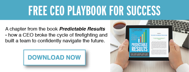 Free CEO Playbook for Success