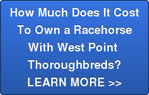 How Much Does It Cost To Own a Racehorse With West Point  Thoroughbreds? LEARN MORE >>