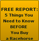 FREE  REPORT 5 Things You Need  to Know BEFORE  Buying a Racehorse