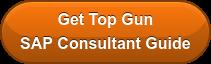 Get Top Gun SAP Consultant Guide