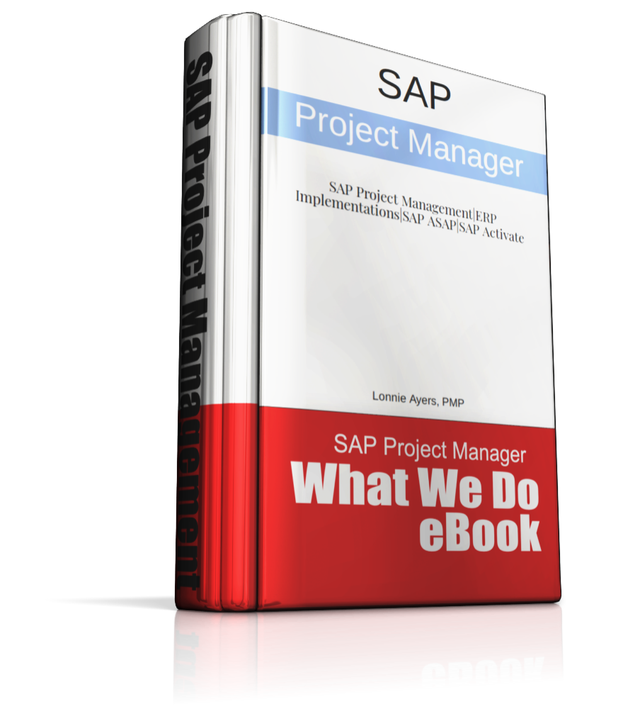 SAP Project Management - What It Is