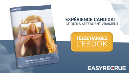 ebook experience candidat