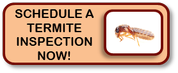 schedule a termite inspection
