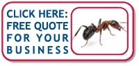 Rose Pest Solutions Commercial Ant Quote