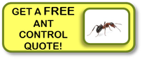 get a free ant quote for your home now!