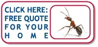 Rose Pest Solutions Residential Ant Quote