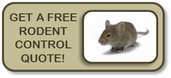 rodent exterminator chicago free quote