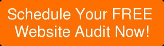 Schedule Your FREE Website AuditNow!