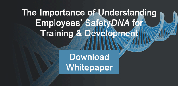 Understanding Employees' SafetyDNA