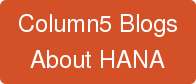 Column5 Blogs About HANA