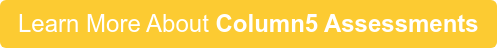 Learn More About Column5 Assessments