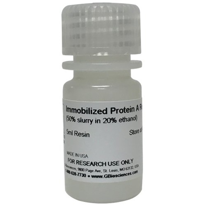 Immobilized Protein A