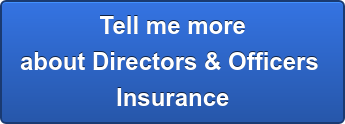 Tell me more about Directors & Officers  Insurance