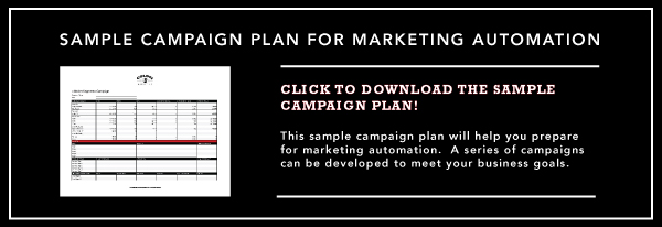Sample Campaign Plan For Marketing Automation