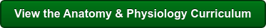 View the Anatomy & Physiology Curriculum
