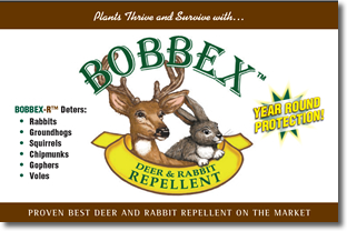 Bobbex Signs