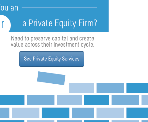 Private Equity Services