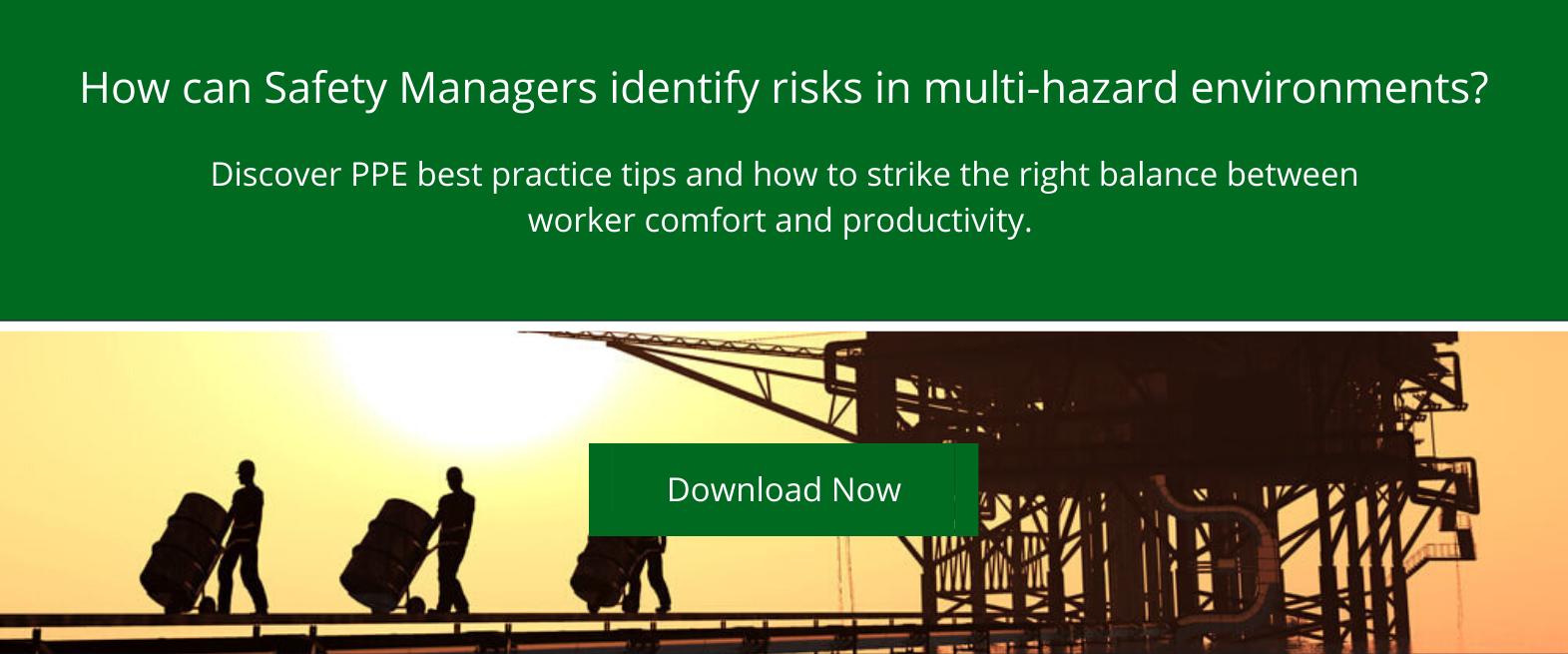 Risk Assessment in multihazard environments