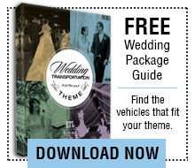 Free Wedding Package Guide Download
