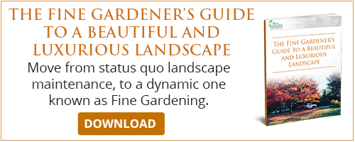 fine gardeners guide to a beautiful and luxurious landscape