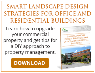 Smart Landscape Design Strategies for Office and Residential Buildings
