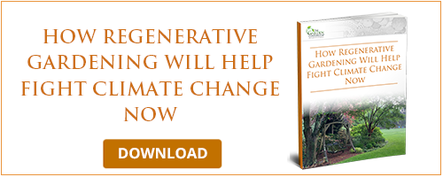 How Regenerative Gardening Will Help Fight Climate Change Now