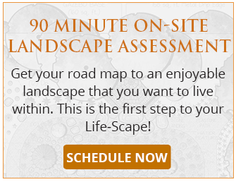 90 Minute On-Site Landscape Assessment