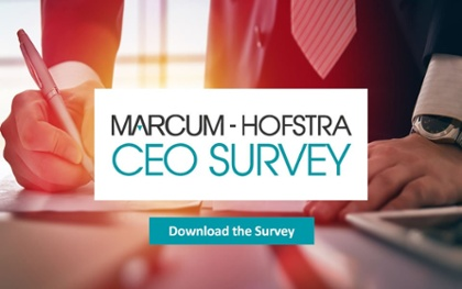 CEO Survey