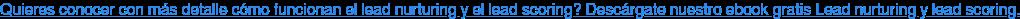 Quieres conocer con más detalle cómo funcionan el lead nurturing y el lead  scoring? Descárgate nuestro ebook gratis Lead nurturing y lead scoring.