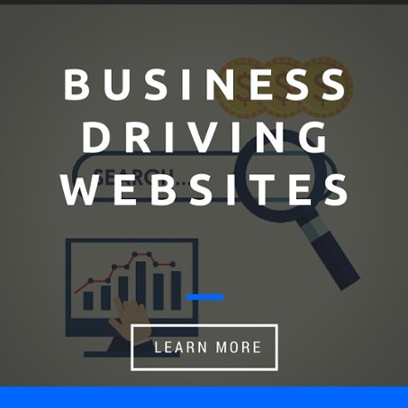 Business Driving Websites