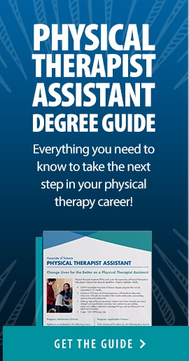 Physical Therapy Assistant Degree Guide