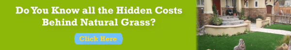 Free Guide: The Hidden Costs of Natural Grass