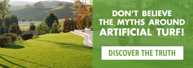 Free Guide: Top 5 Myths About Artificial Turf