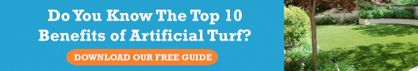 Download Our Free Guide: Top 10 Benefits of Artificial Turf