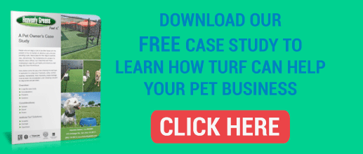 commercial-pet-artificial-turf